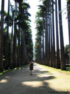 Visit places like the Jardim Botanico or Botanical Garden