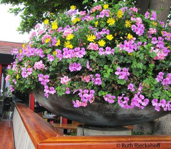Big flower pot in front of restaurant