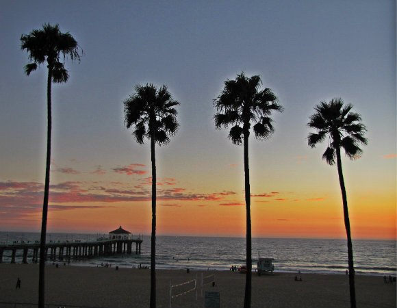 manhattan beach pier, pier in los angeles county, pier and palms at sunset, pier at sunset