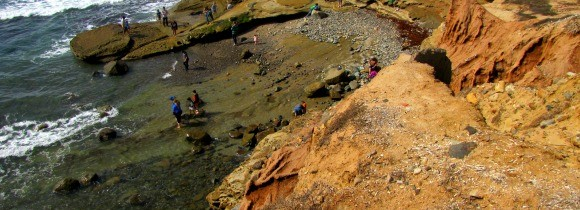 The Tidepools at Cabrillo National Monument