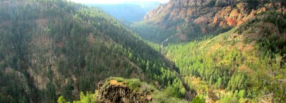 Spying on Oak Creek Canyon