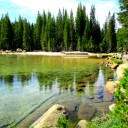 Yosemite National Park: Tioga Road