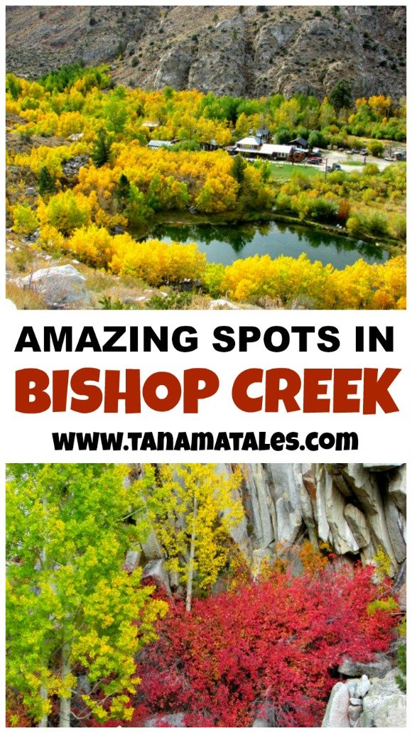 What to see and do in the Bishop Creeks area.  This region, full of lakes and fall colors, is located in California's Eastern Sierra.