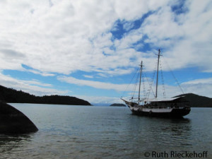 You can beat a day of sailing around Paraty for 20 bucks per person.