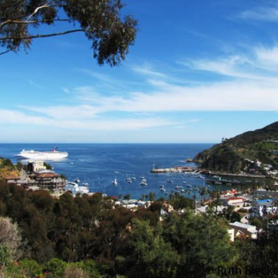Catalina Island from the Top