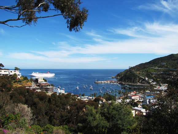 Perfect photo of Avalon from the top, Catalina, California