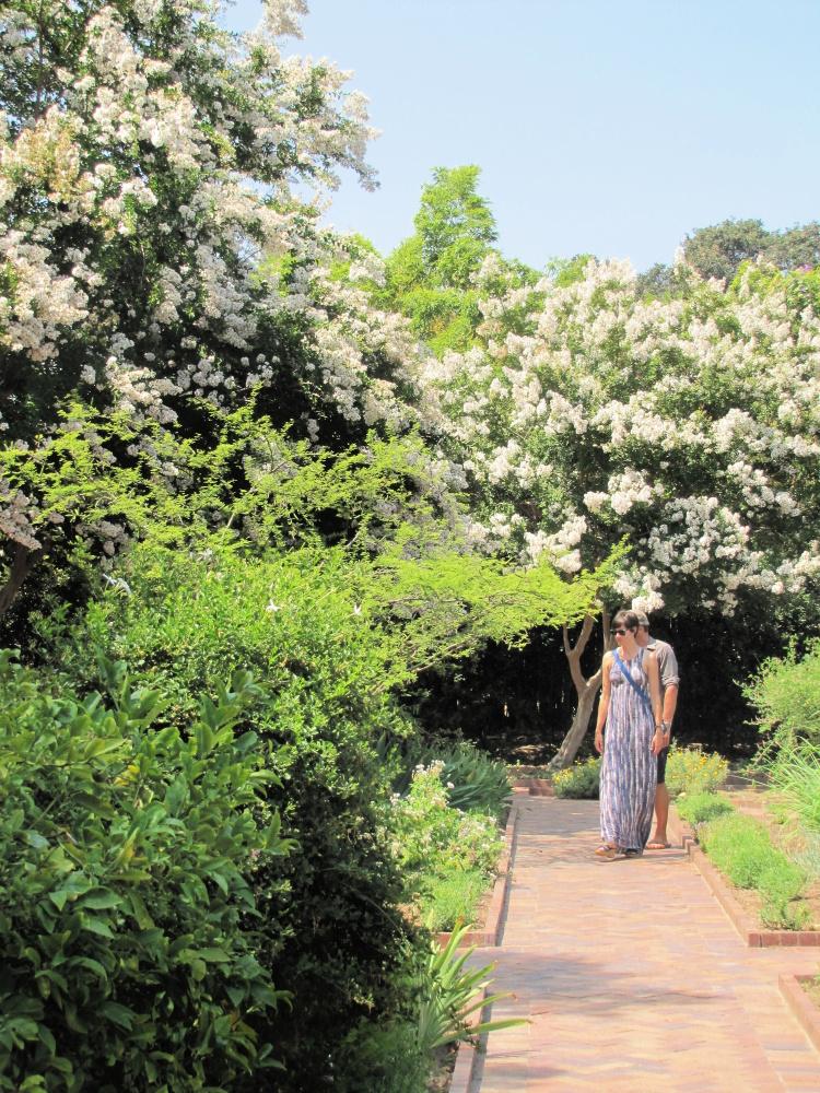 Couple walking around flowers, The Huntington, San Marino, California
