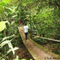 Crossing another bridge, Cerro Azul Meambar National Park, Honduras