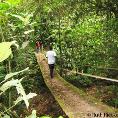 Cerro Azul Meambar: Hiking in a Honduran National Park