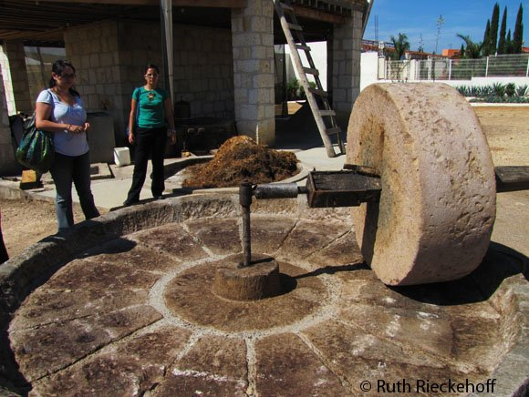 Area where the roasted piñas are crushed