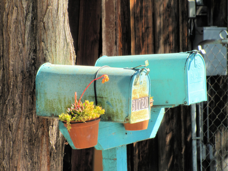 Mailboxes at Los Rios