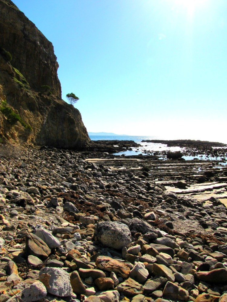 Tidepools near Portuguese Point at Abalone Cove Shoreline Park, Palos Verdes Peninsula, Los Angeles California
