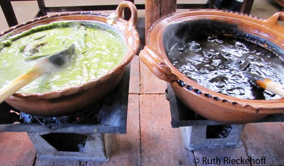 Black and green moles at Hacienda Cuilapam