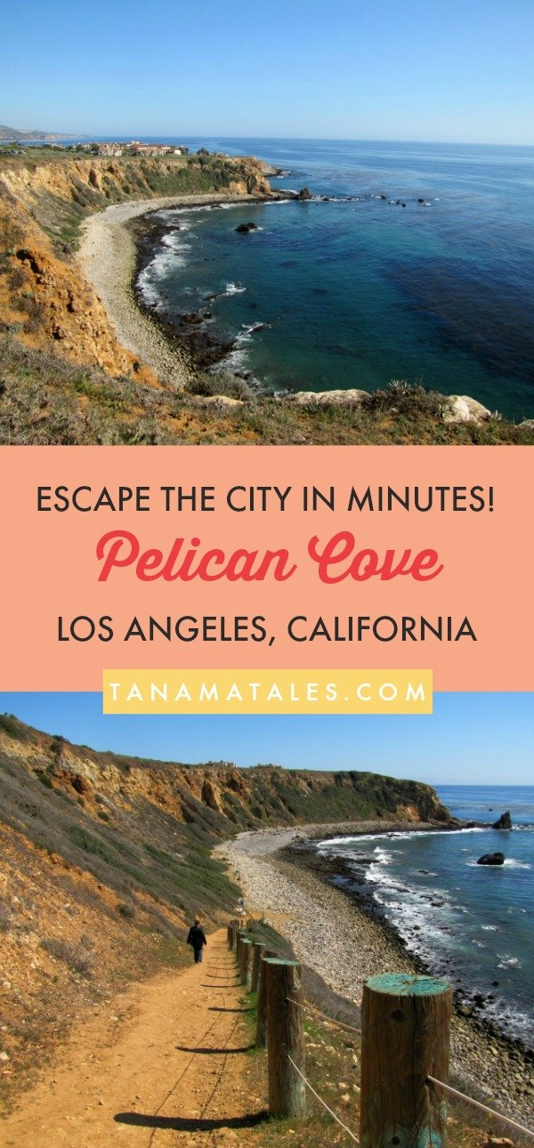 Things to do in #LosAngeles, #California – Travel tips and vacation ideas – Pelican Cove, a cove in the Palos Verdes Peninsula, is accessed through a steep trail. Once at the beach level, you will have access to a wide array of marine life on the tidepools. This easy trail takes you to a beautiful spot! Do not forget to take a look at the cove from a promontory located next to the parking lot. #beach #SouthernCalifornia #LA