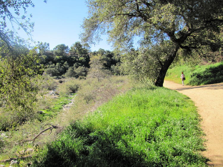 First part of the Eaton Canyon Hike