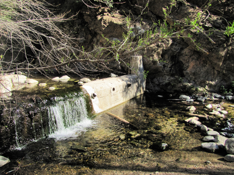 Small dam in the Eaton Canyon area