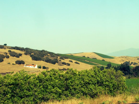 Hills in the Santa Ynez Valley, California