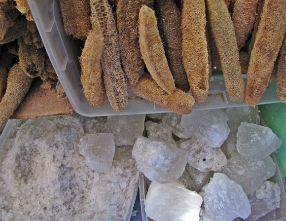 Luffa sponges and salt rocks, Mercado Hidalgo, Tijuana, Mexico