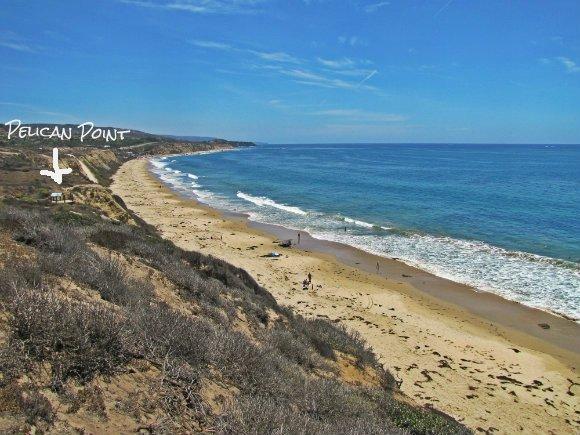 Pelican Point Beach The Best Beaches In World