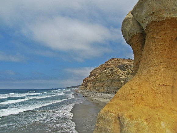 Torrey Pines State Beach, Torrey Pines State Reserve, San Diego, California