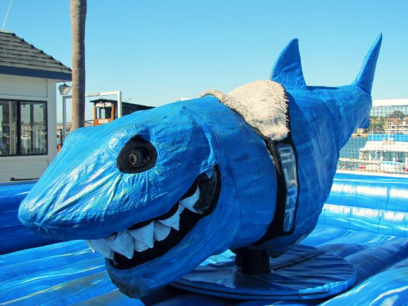 Electric Shark at Balboa Funzone, Newport Beach, California