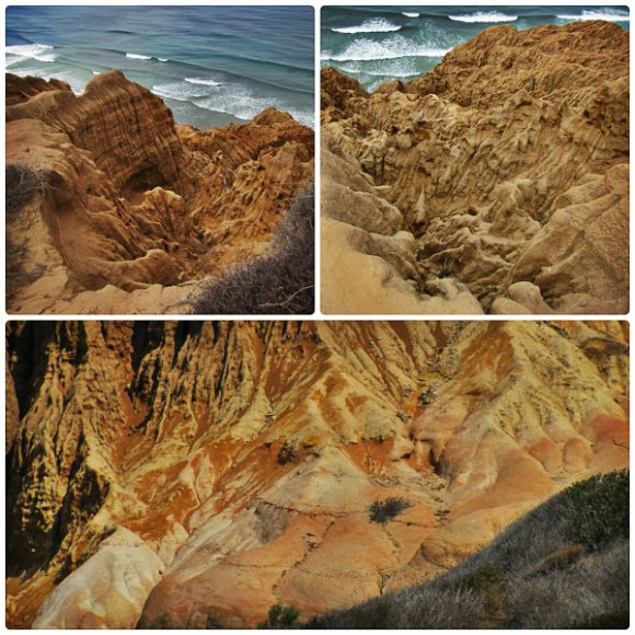 Rock Formations, Torrey Pine State Reserve, San Diego, California