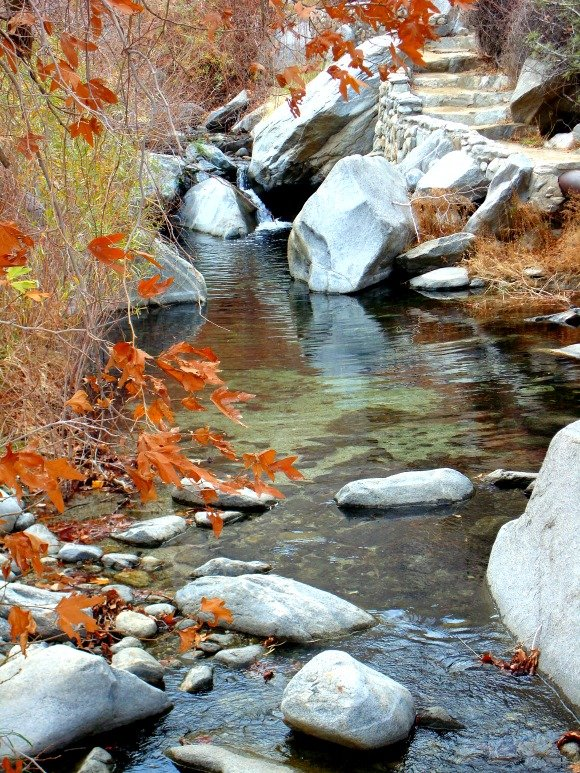 Creek, Tahquitz Canyon, Palm Springs, California