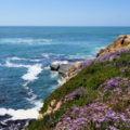 Count not travel, View of the Point Loma Peninsula Cliffs, San Diego, California