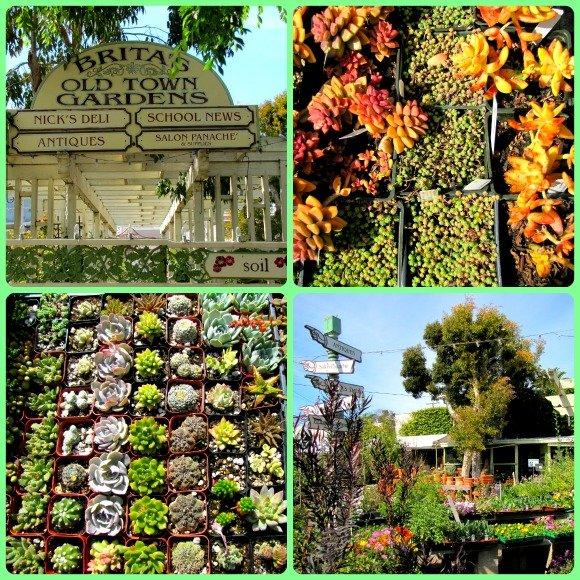 Brita's Ols Town Garden, Seal Beach, California