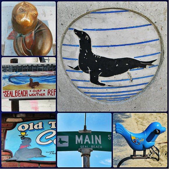 Seals, Seal Beach, California