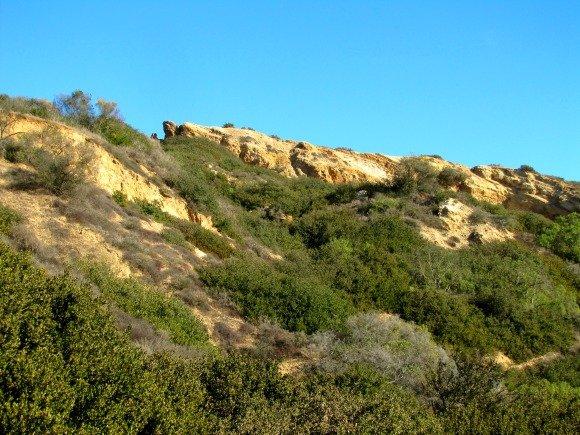 Portuguese Bend Reserve, Palos Verdes Peninsula, California