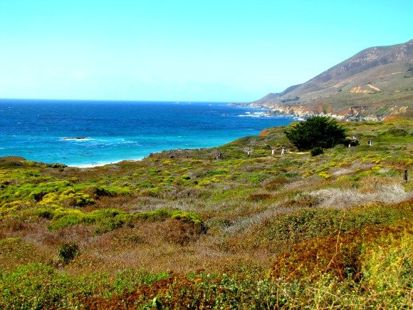 View of  Garrapata Beach, Garrapata State Park, Big Sur, California