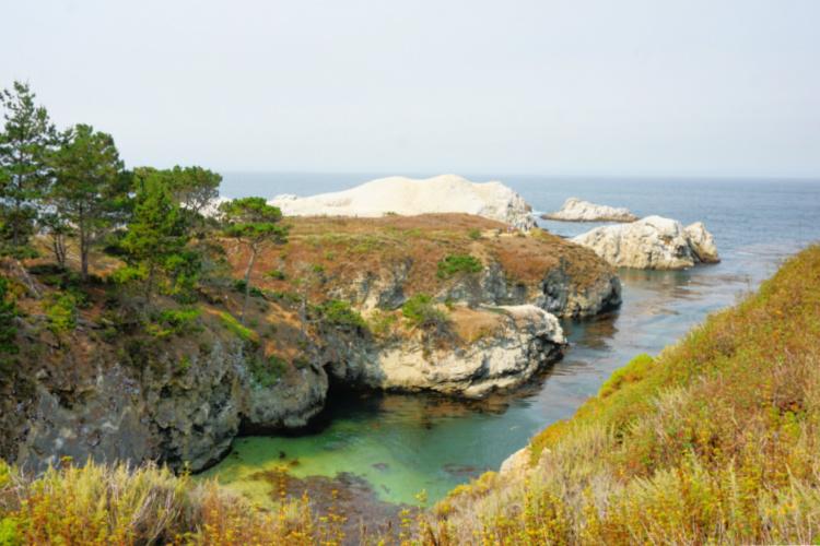 China Cove, Bird Island Trail, Point Lobos, California