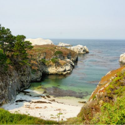 Point Lobos: A Must Visit Along the California Coast