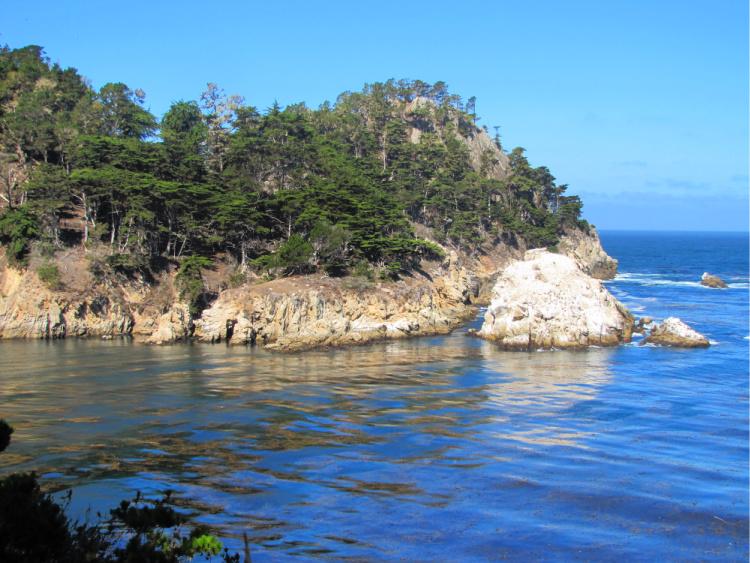 Bluefish Cove