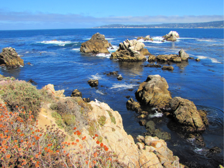 Rocky formations in Point Lobos