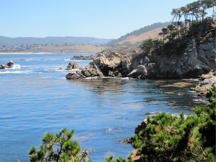 View from Cannery Point in Point Lobos