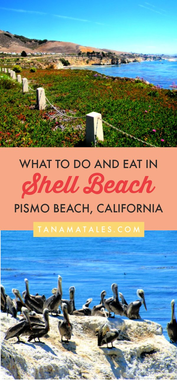Things to do in Pismo Beach, #California – Travel tips and ideas – Shell Beach, a neighborhood of Pismo Beach, is full of coastal walks, hiking trails, coves, caves, wildlife and restaurants serving delicious food. I have put together a guide detailing what to do in this area. Make sure to include Shell Beach in any #CentralCoast #roadtrip. #PCH #beachtown #SLO