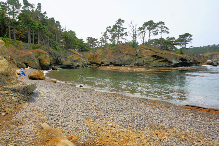 The Pit (Cove) in Point Lobos