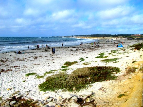 Spanish Bay, 17 Mile Drive, Monterey, California