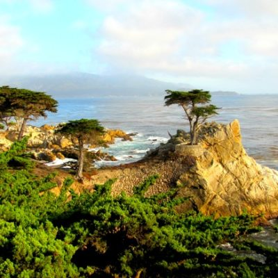 The 17-Mile Drive in Photos