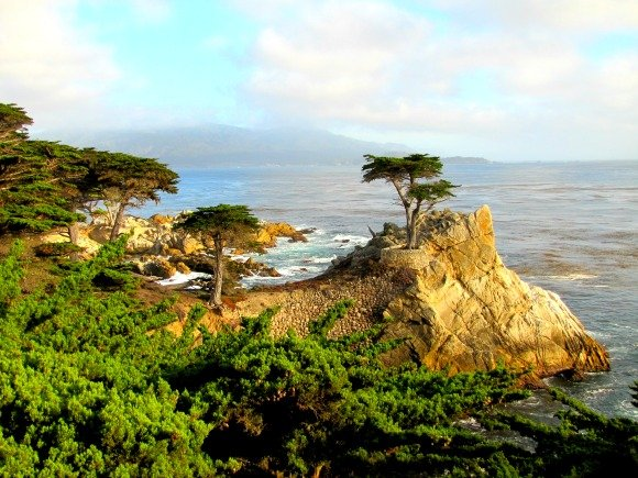The Lone Cypress, 17 Mile Drive, Monterey, California