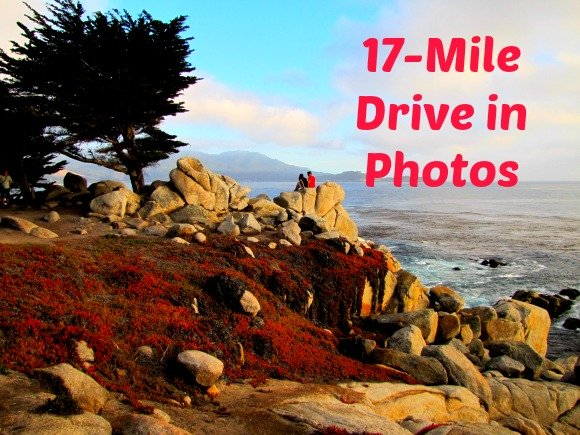 Pescadero Point, 17 Mile Drive, Monterey, California