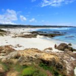 Asilomar State Beach, Things to do in Pacific Grove
