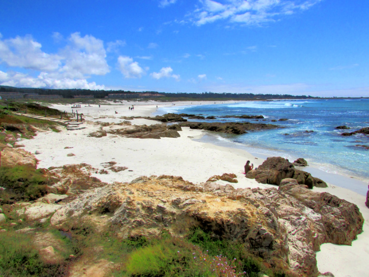 Things to Do in Pacific Grove, California