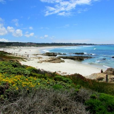 Pacific Grove: Point Pinos, Asilomar and Downtown