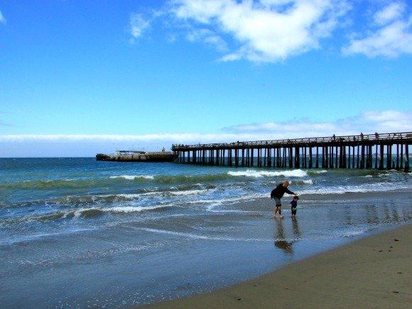 Seacliff State Beach and The Palo Alto, Aptos, Santa Cruz, California