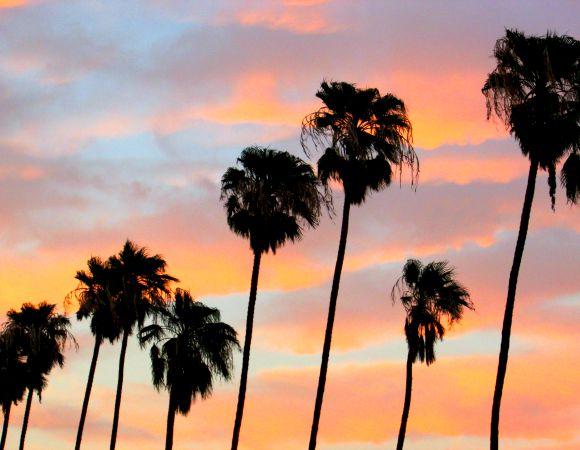 IMHyatt Palm Springs, Palm Springs, California