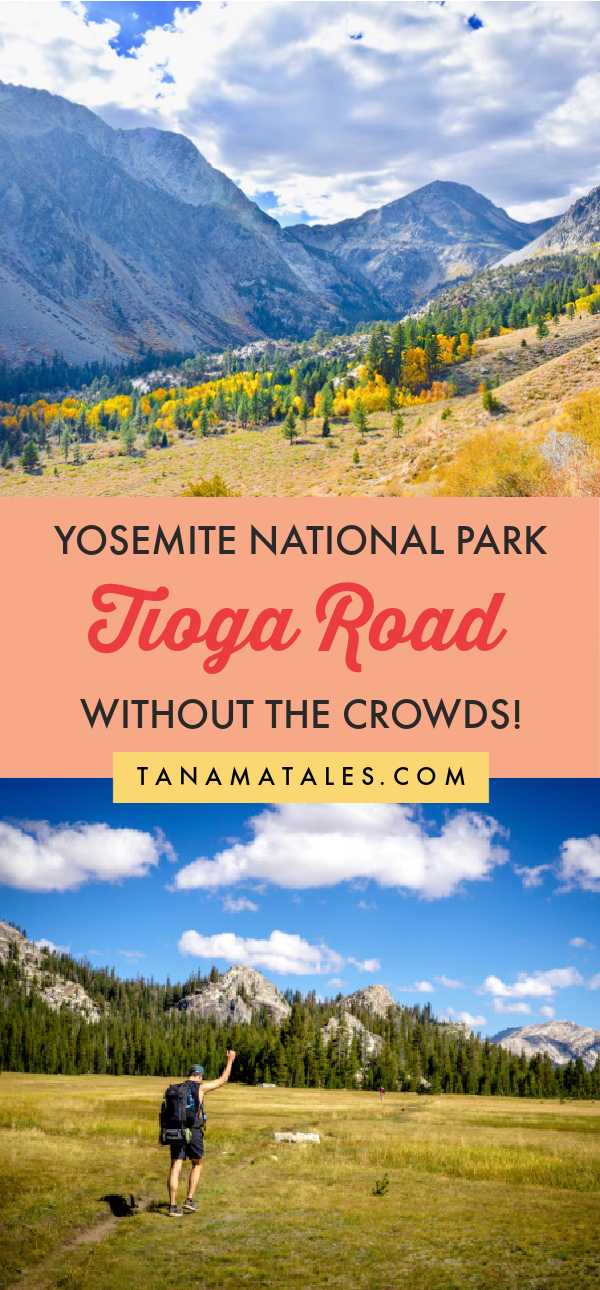 This article explores the Tioga Road and Tuolumne Meadows area of Yosemite National Park | Things to Do in Yosemite National Park | Sierra Nevada | Tioga Pass | Tioga Road | Tenaya Lake | Olmstead Point | Tuolumne Meadows | Tuolumne River | Yosemite Itinerary | Yosemite Weekend | Yosemite Gateway