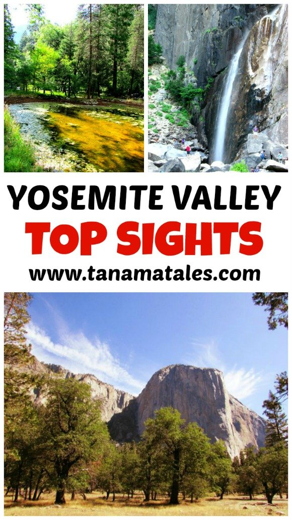 Here are the top sights in the Yosemite Valley! There is a lot of things to seem, so, make plans to hit the top spots.